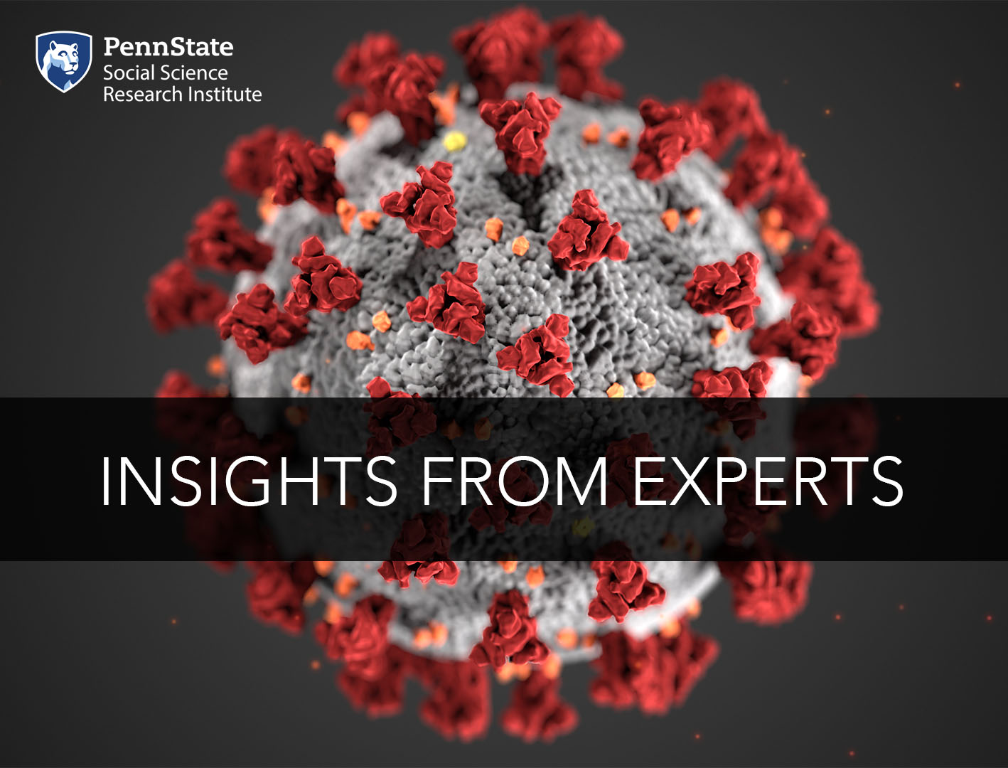 Insights from Experts image